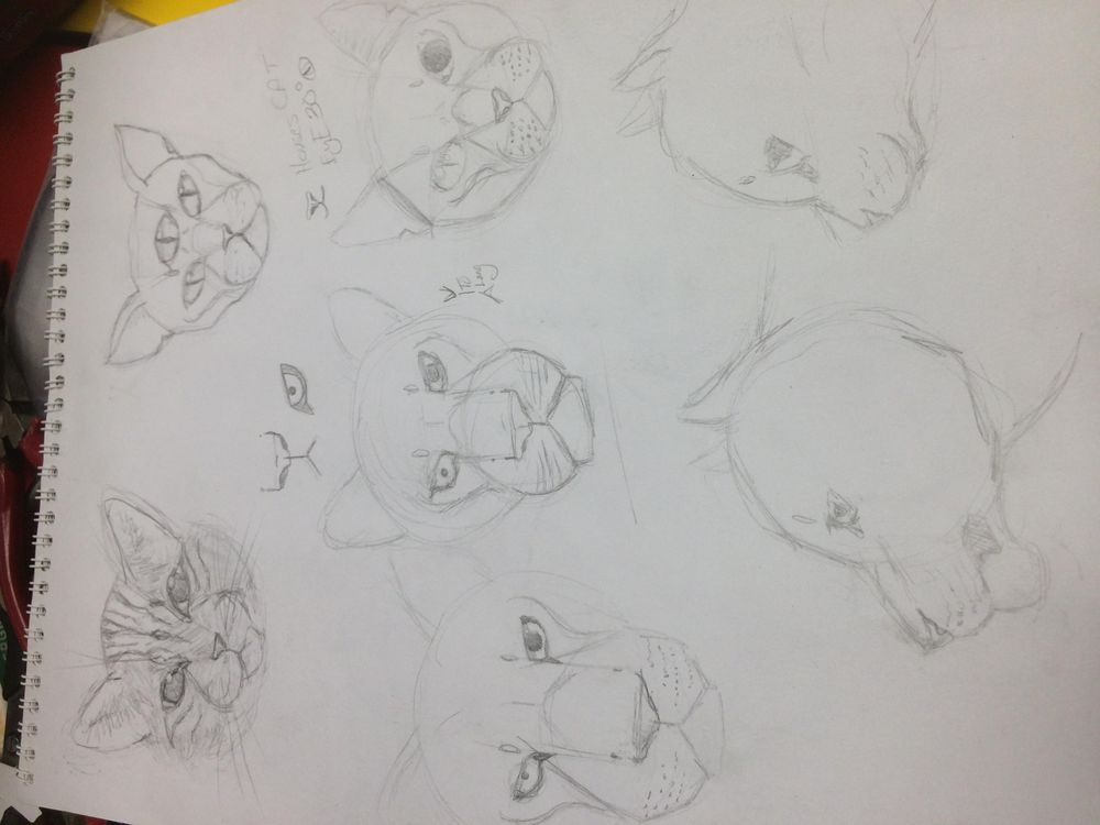 Variety of Animal Drawings - image 3 - student project