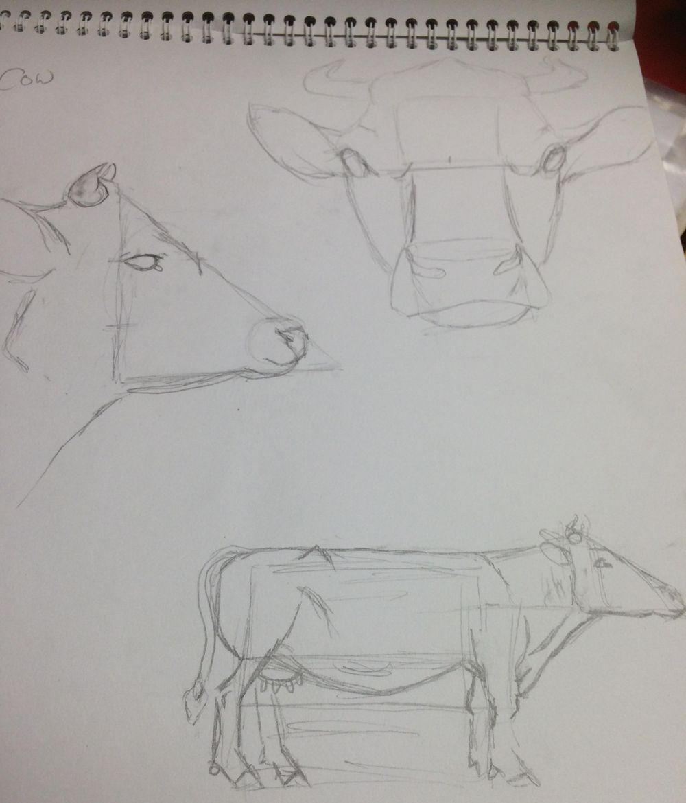 Variety of Animal Drawings - image 2 - student project