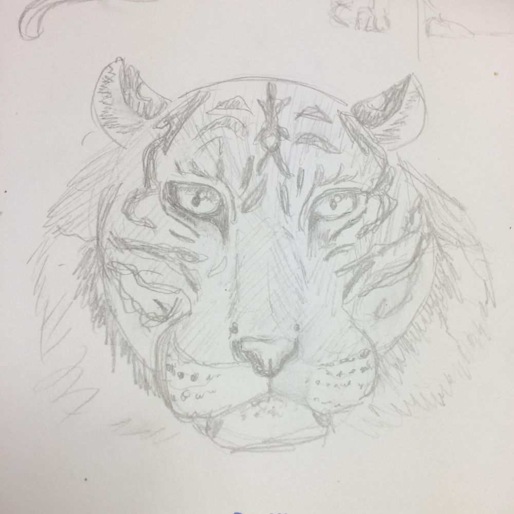 Variety of Animal Drawings - image 6 - student project