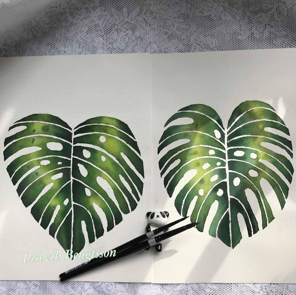 Monstera leaves - image 1 - student project