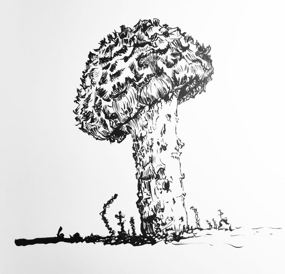 Shock-headed Boletus Mushroom - image 1 - student project