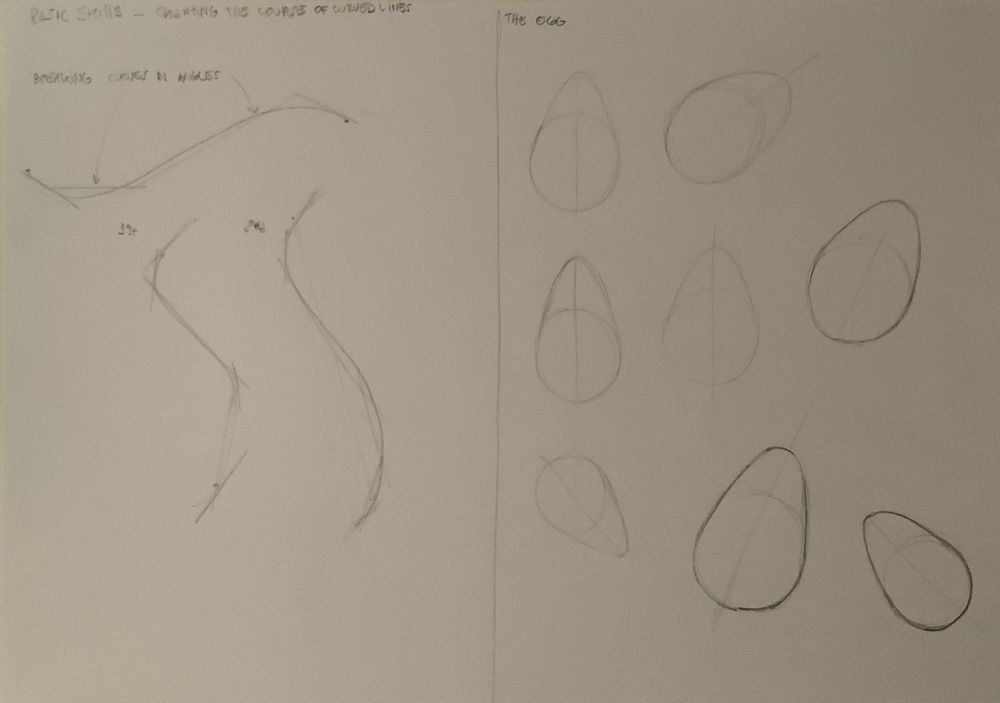 Basic skills / Getting started with drawing - exercises - image 1 - student project