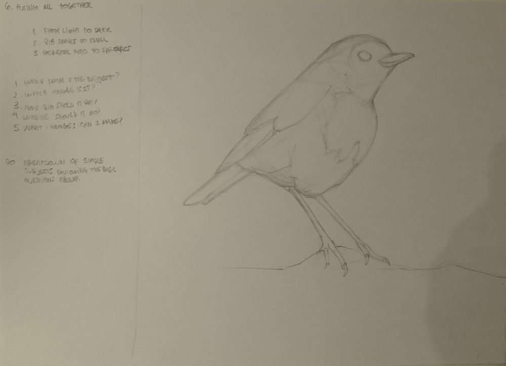 Basic skills / Getting started with drawing - exercises - image 3 - student project