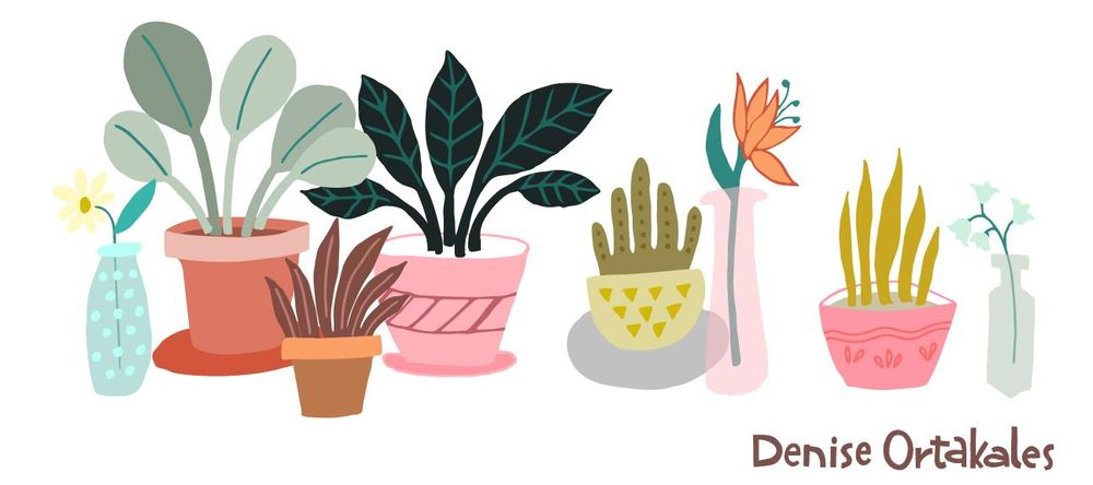 House Plants - image 1 - student project