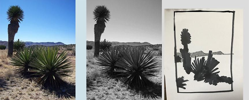 Notan sketches-west Tx. desert - image 2 - student project