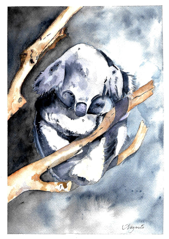 Koala - Louise De Masi - image 1 - student project