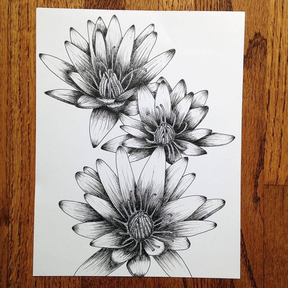 Penned Waterlilies + Poppies - image 1 - student project