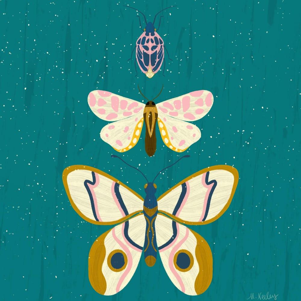 Beautiful Bugs - image 3 - student project