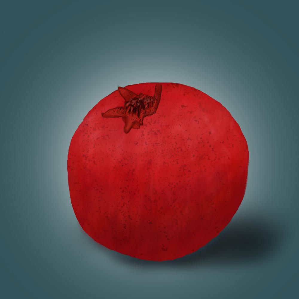 Pomegranate illustration - image 4 - student project