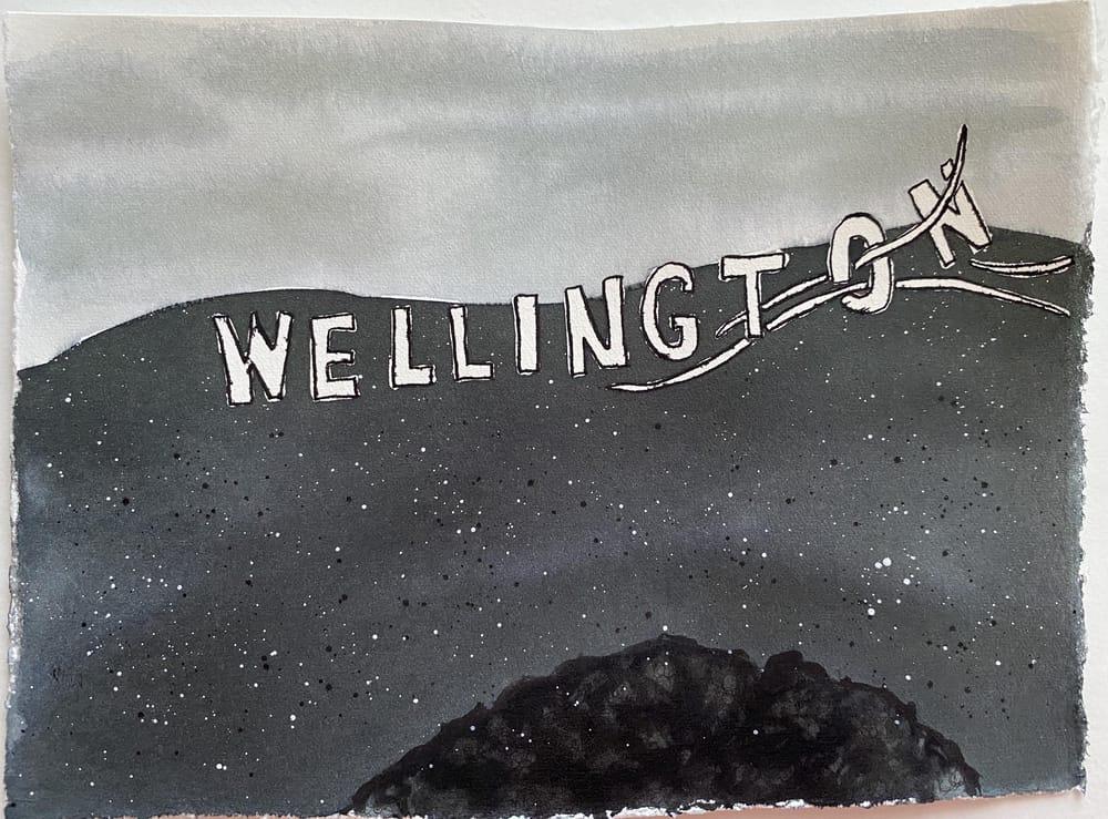 Hamilton and Wellington, New Zealand - image 3 - student project