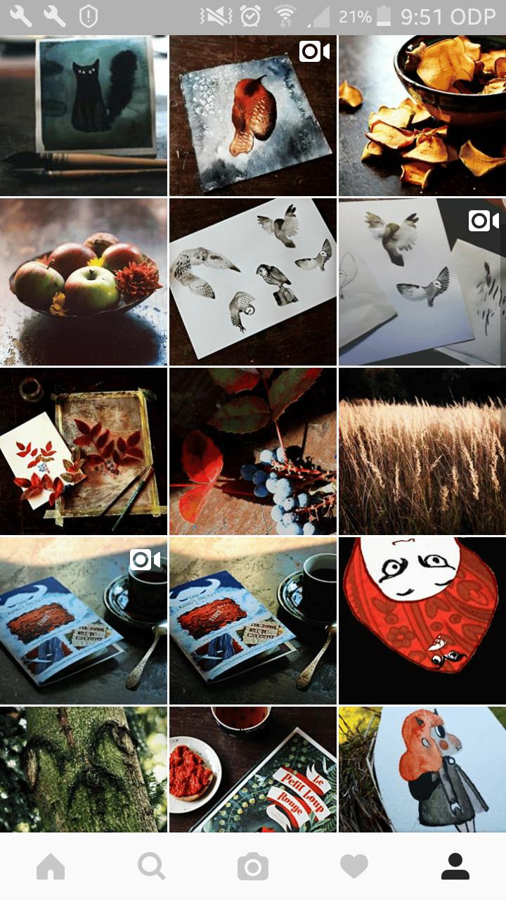 Instagram remake - image 3 - student project