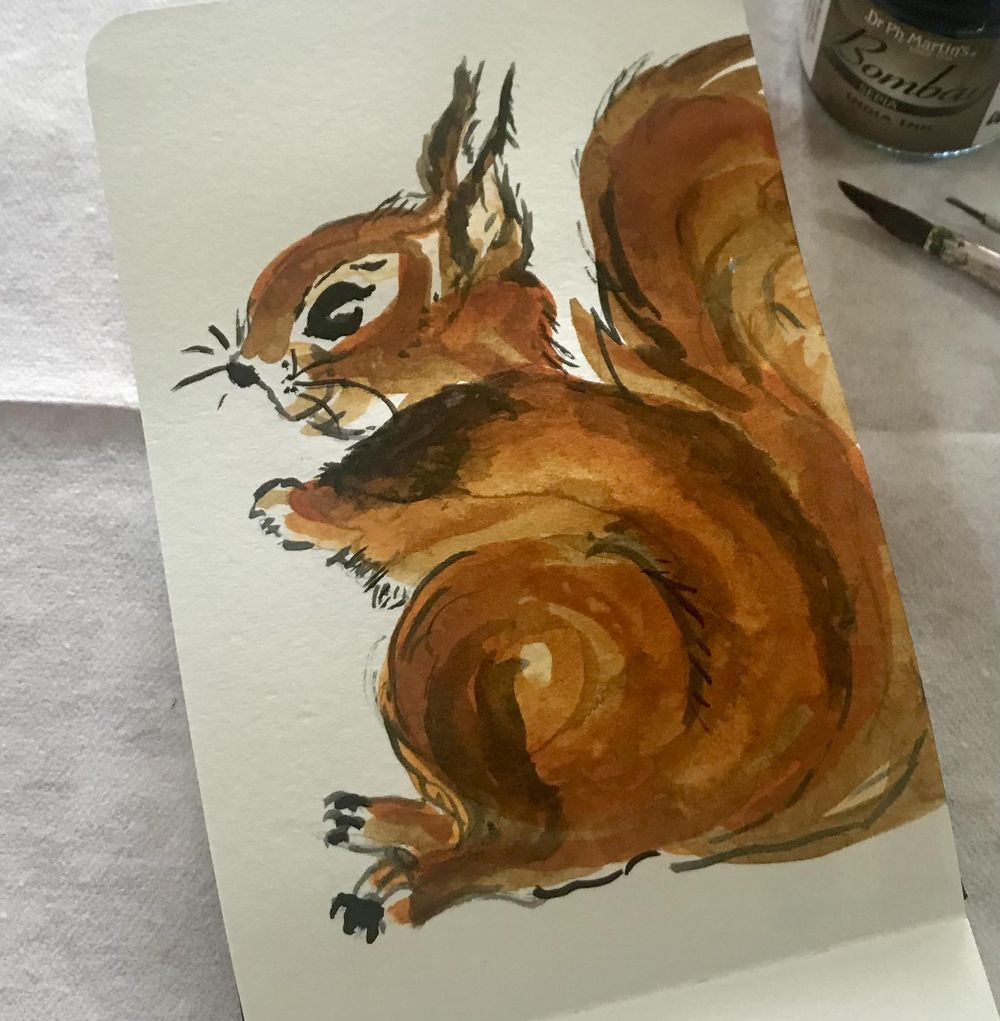 My squirrel - image 2 - student project