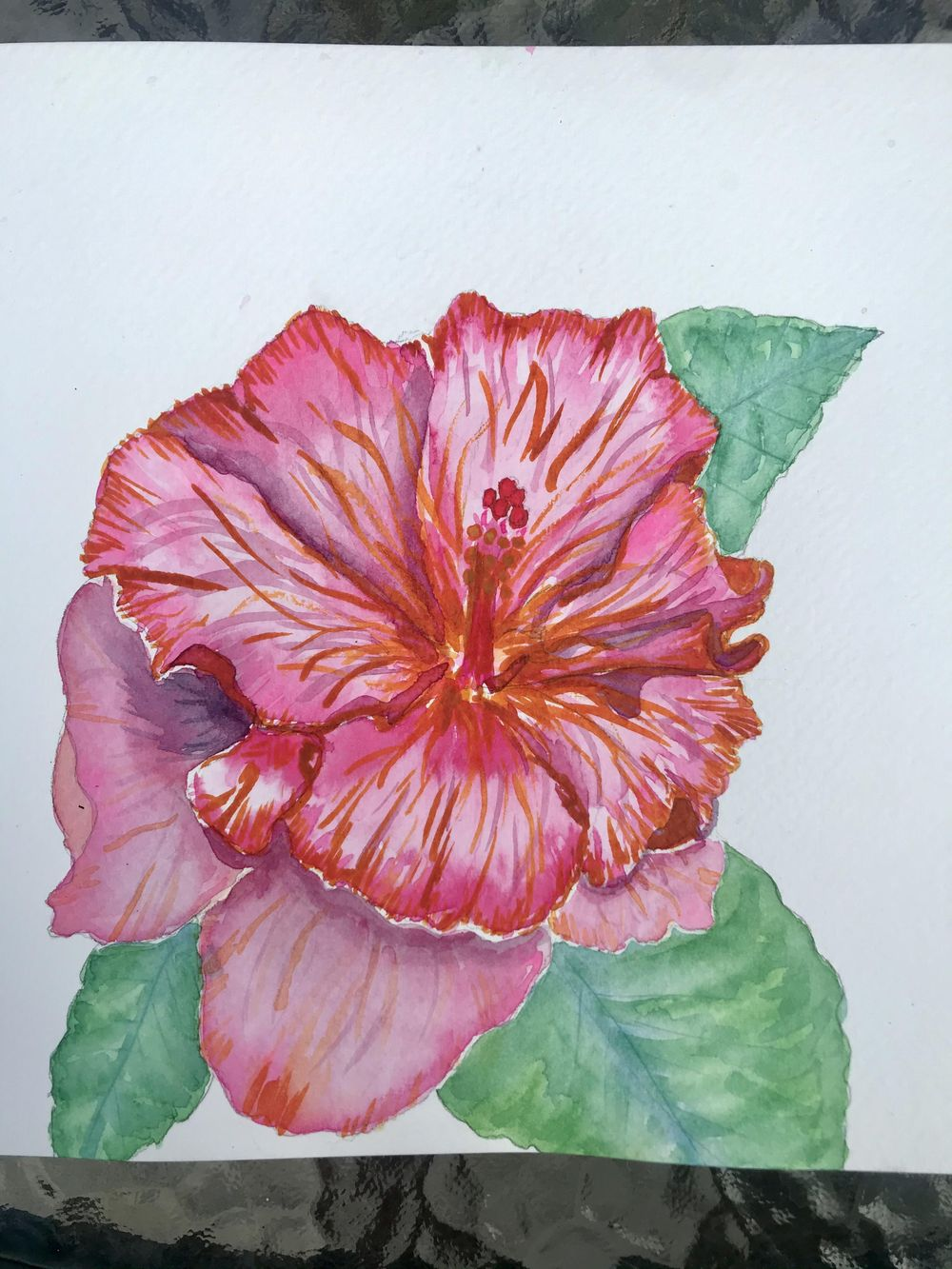 Ink and watercolour hibiscus - image 1 - student project