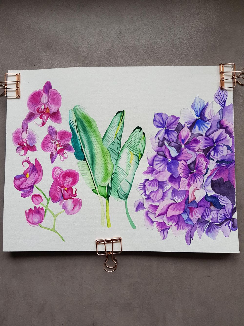Orchids watercolours - image 1 - student project