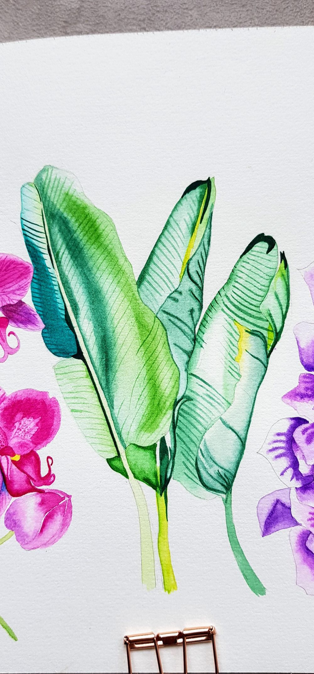 Banana Leaves - image 1 - student project