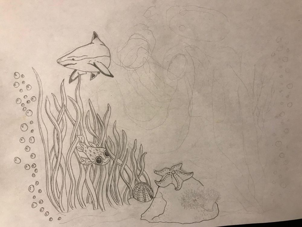 Sea Creature Ink - image 2 - student project