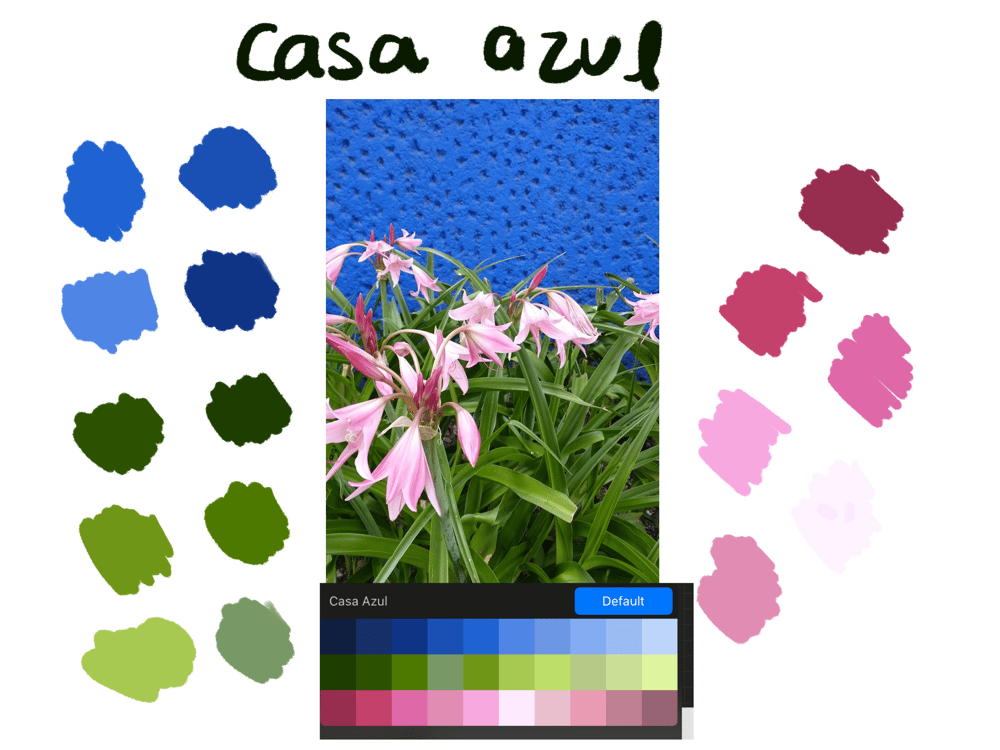 Creating a palette from a picture - image 1 - student project