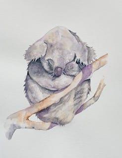 Koala Bear - image 1 - student project