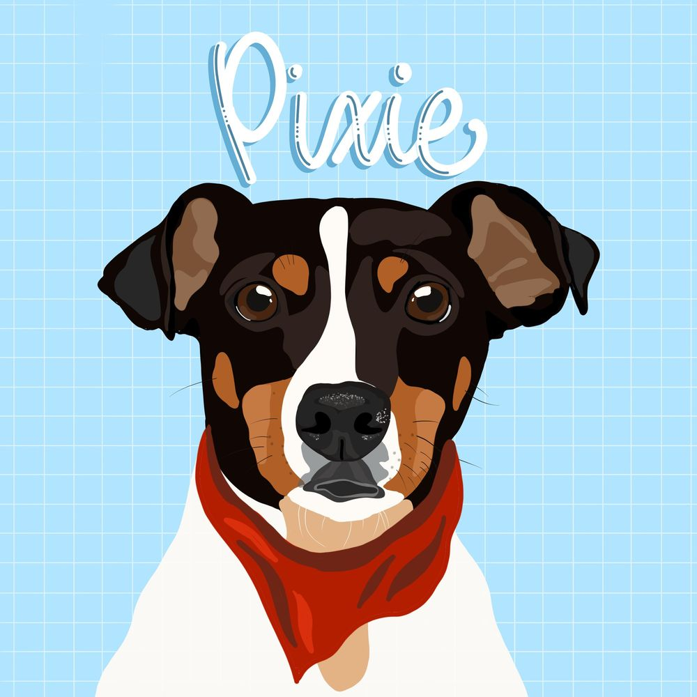 Pixie - image 1 - student project