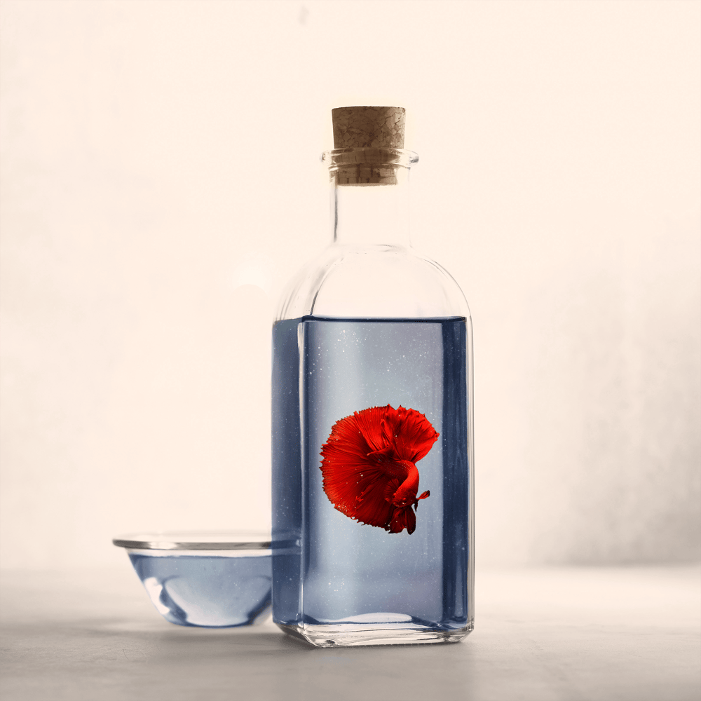 Beta Fish in the Bottle - image 1 - student project
