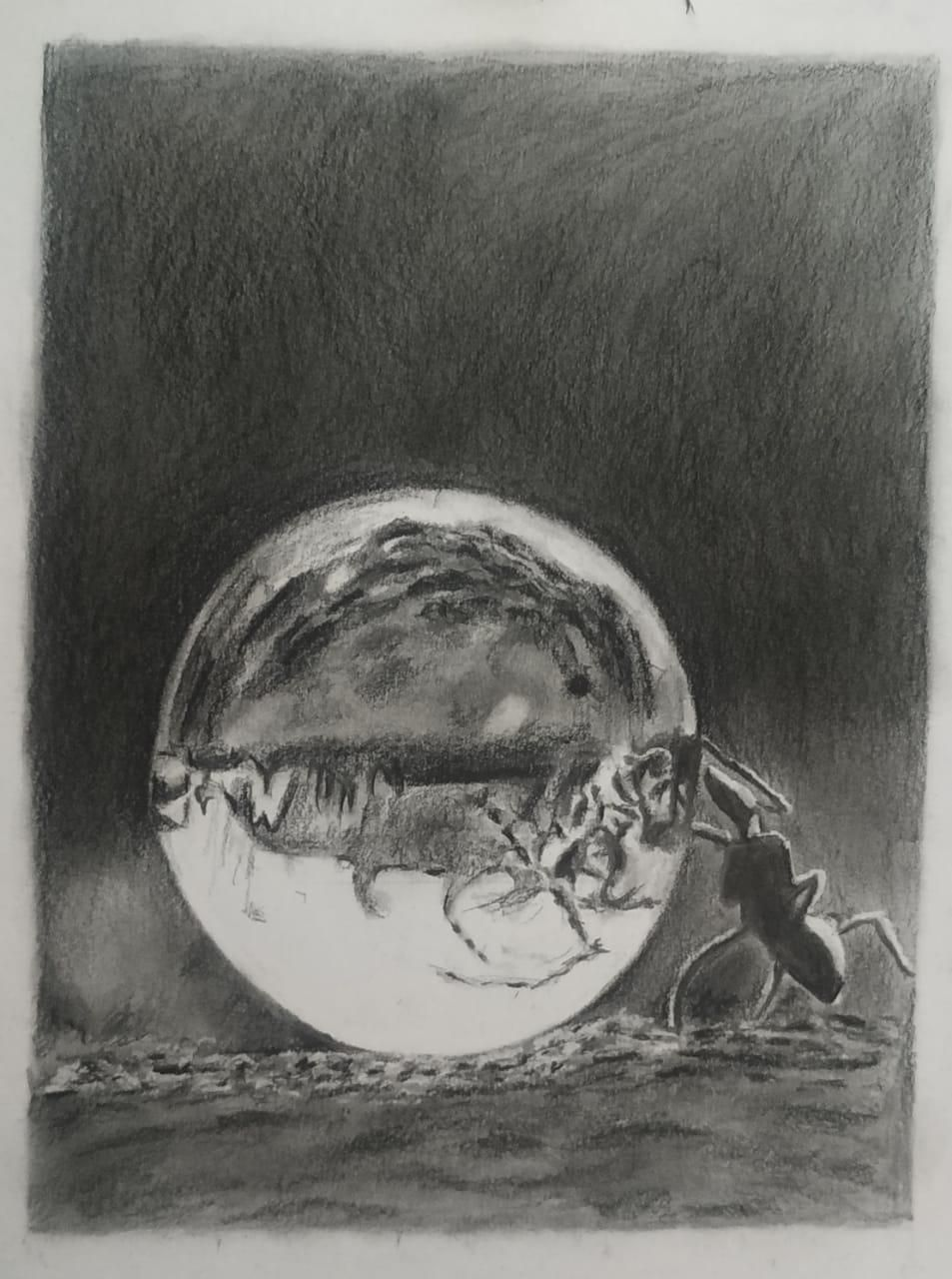 Water bubble - image 5 - student project