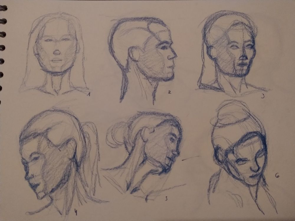 Drawing the head 1 - image 1 - student project