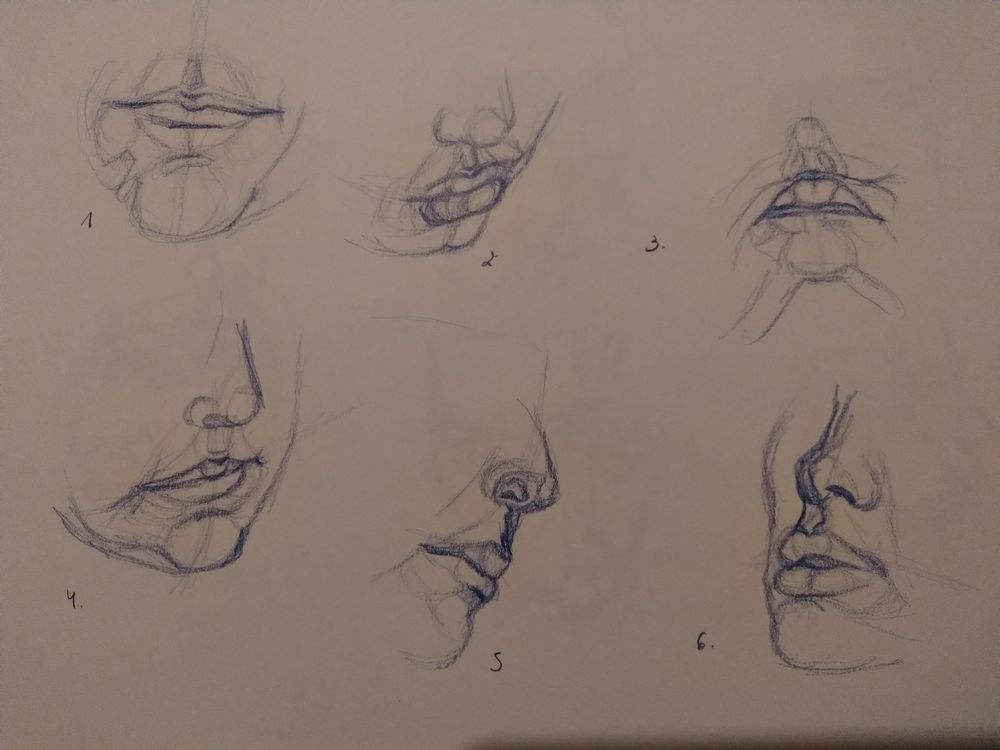 Drawing the head 2 - image 2 - student project