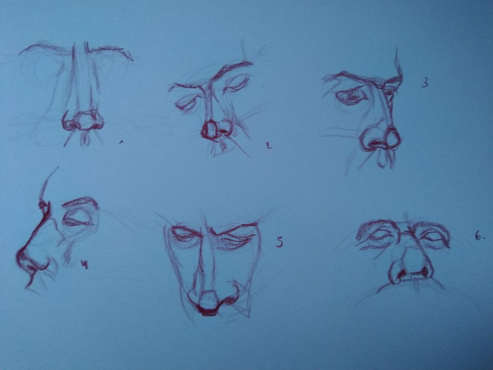 Drawing the head 2 - image 1 - student project