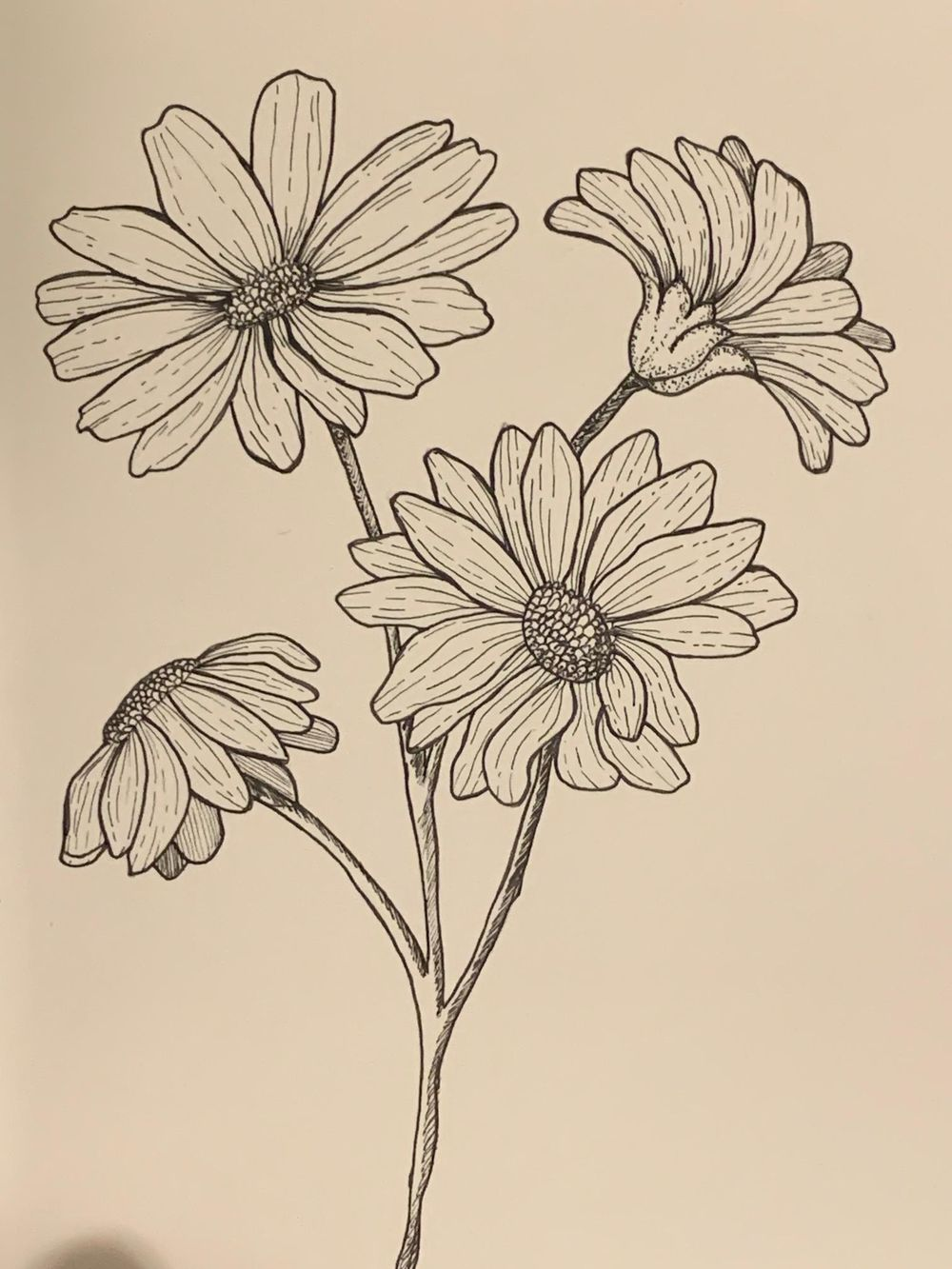 Flower drawing - image 2 - student project