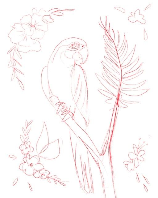 Fun Parrots - image 1 - student project