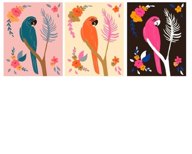 Fun Parrots - image 2 - student project