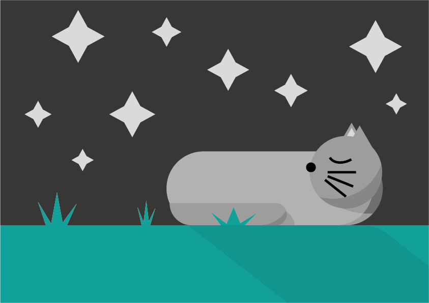 Sleeping Cat - image 2 - student project