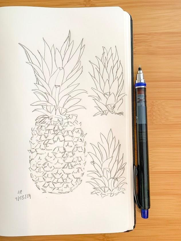 Pineapple Studies 4 Ways - image 1 - student project