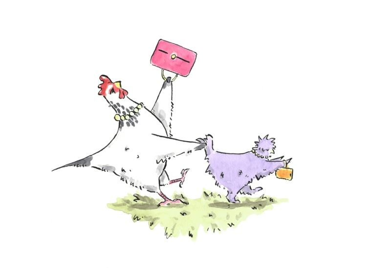 Hen fight club - image 1 - student project