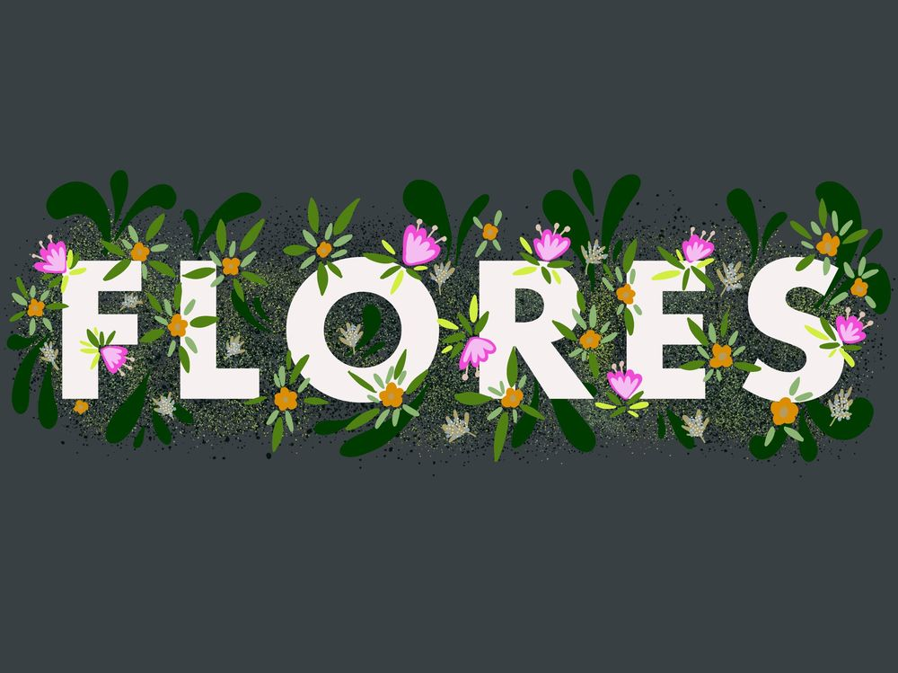Flores - image 1 - student project