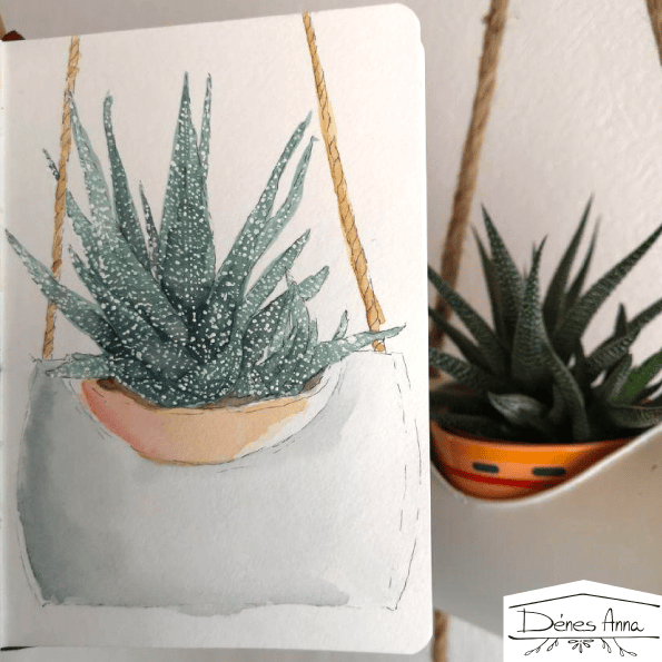 House plants and flowers - image 10 - student project