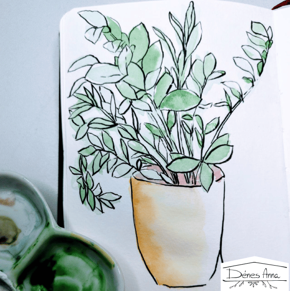 House plants and flowers - image 15 - student project