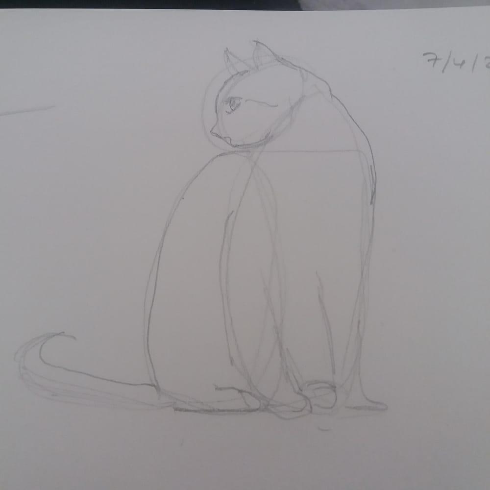 Animal Study - Drawing cats #skillshareclass - image 3 - student project