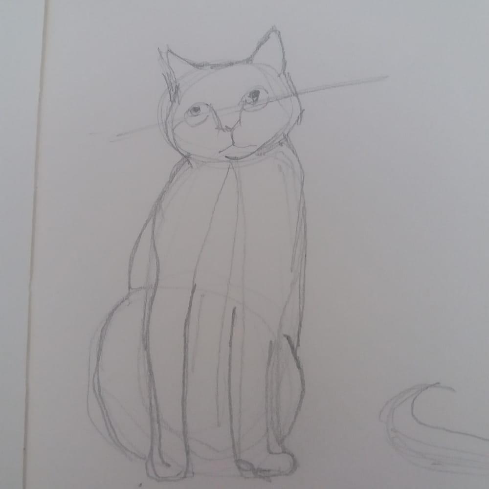 Animal Study - Drawing cats #skillshareclass - image 2 - student project