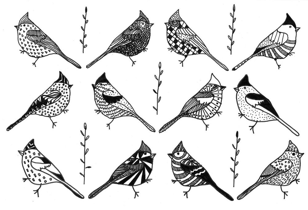 100 Birds - image 37 - student project