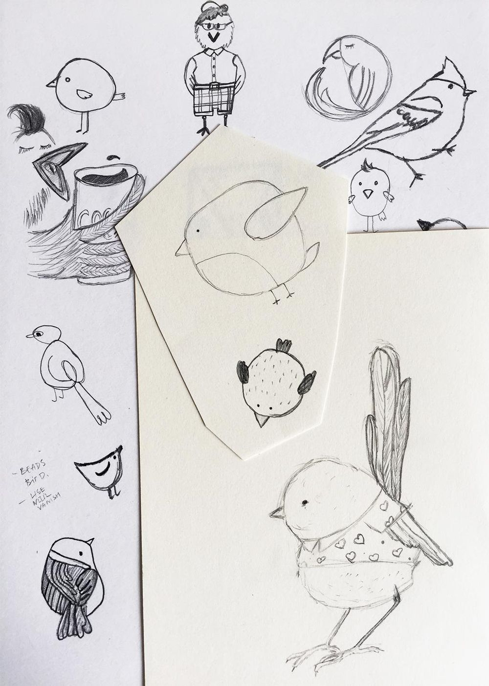 100 Birds - image 3 - student project