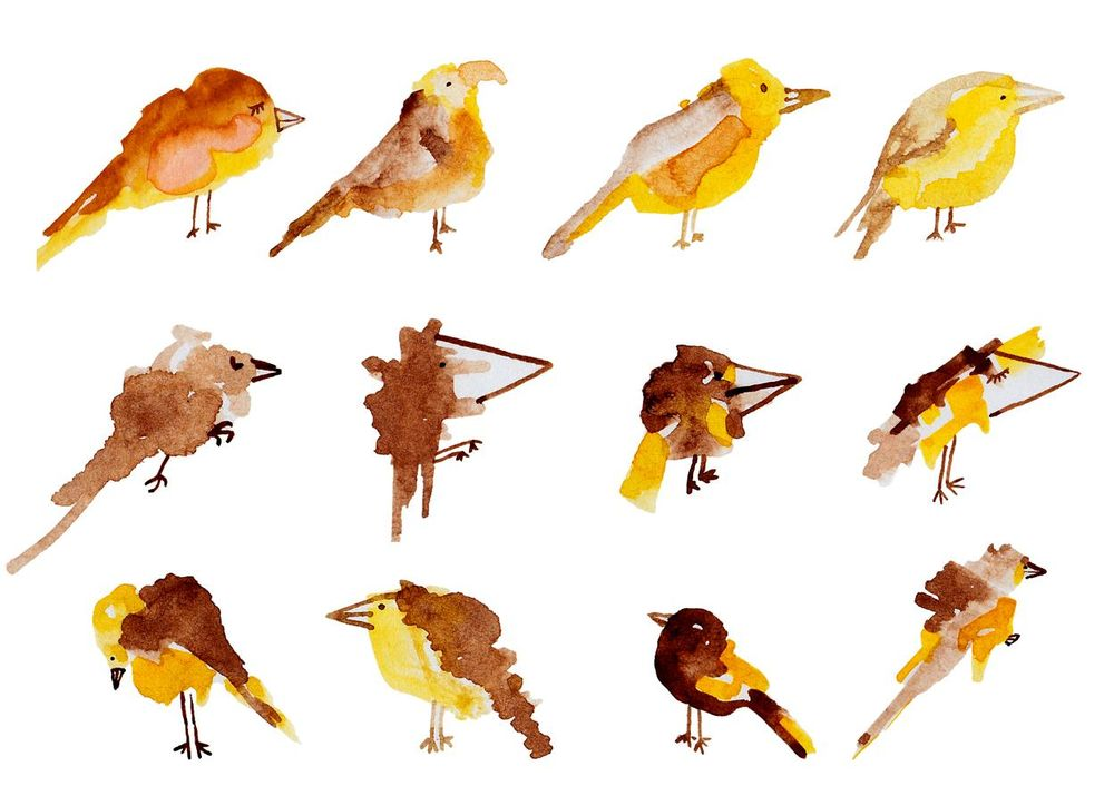 100 Birds - image 17 - student project