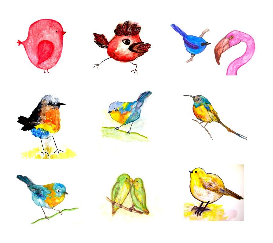 100 Birds - image 21 - student project