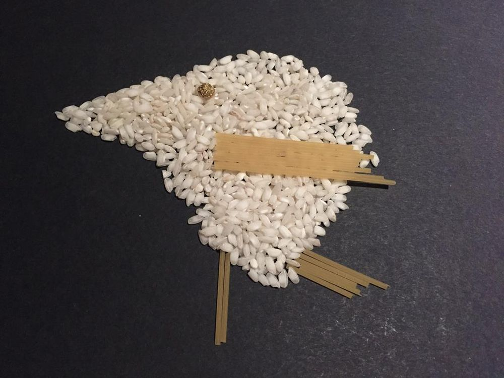 100 Birds - image 16 - student project