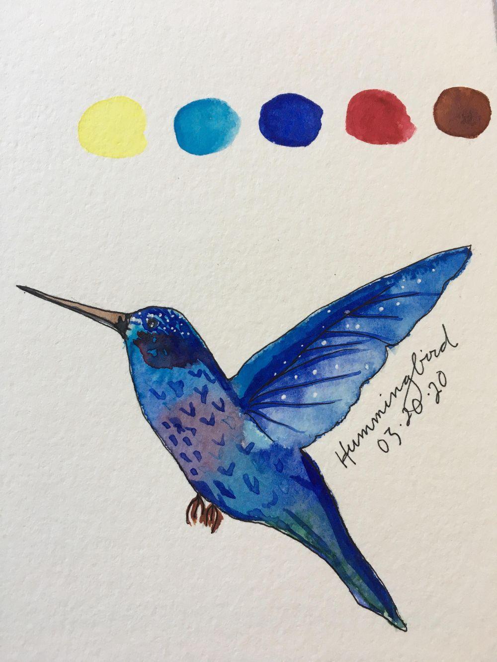 Hummingbird - image 1 - student project