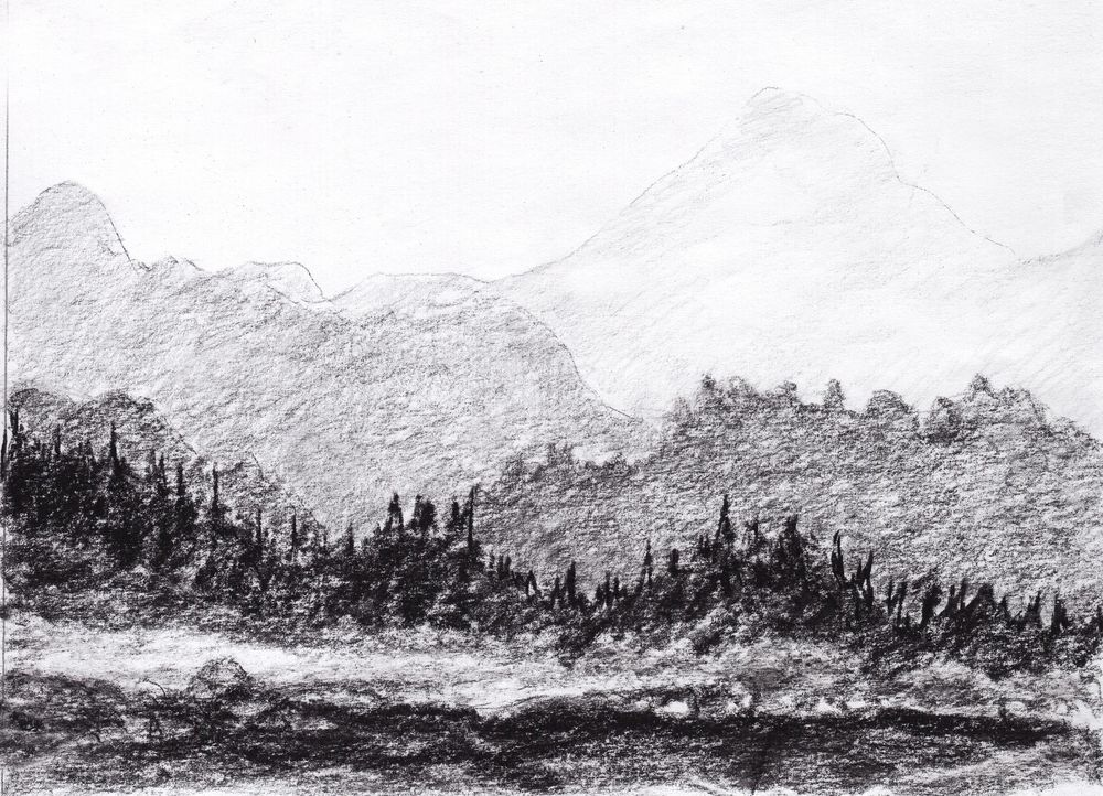 Weeks of tactille line drawings - image 1 - student project