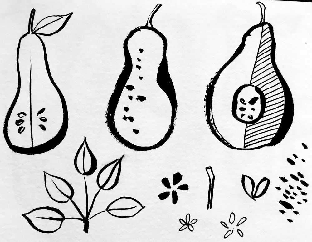 Pears Pattern - image 1 - student project