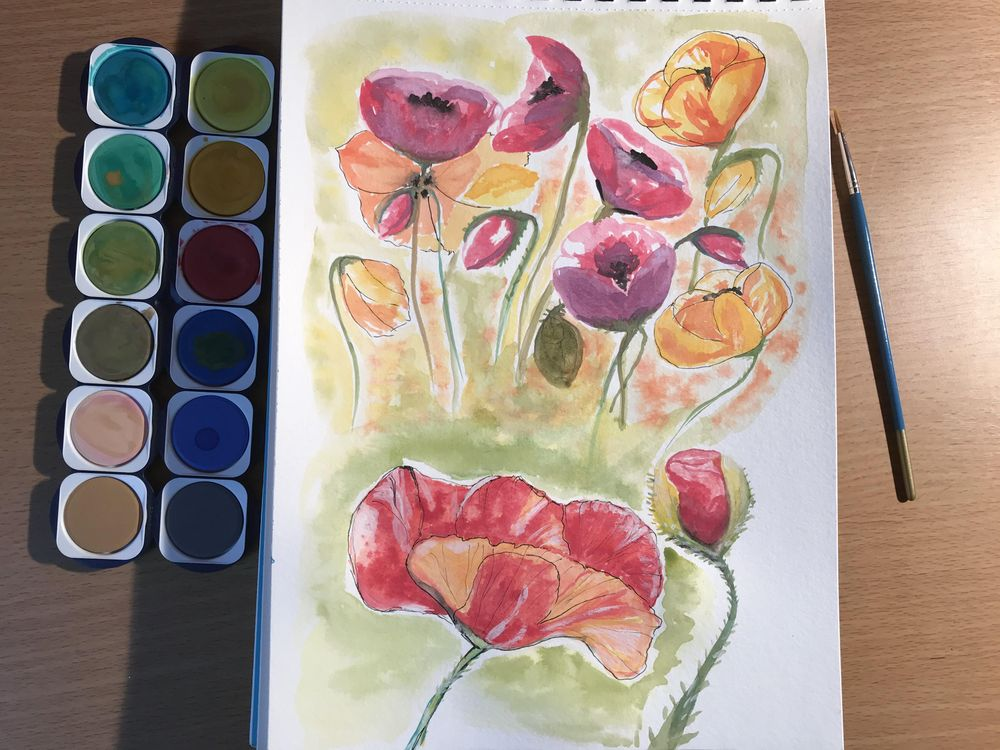 Enthusiast beginner's poppies - image 1 - student project