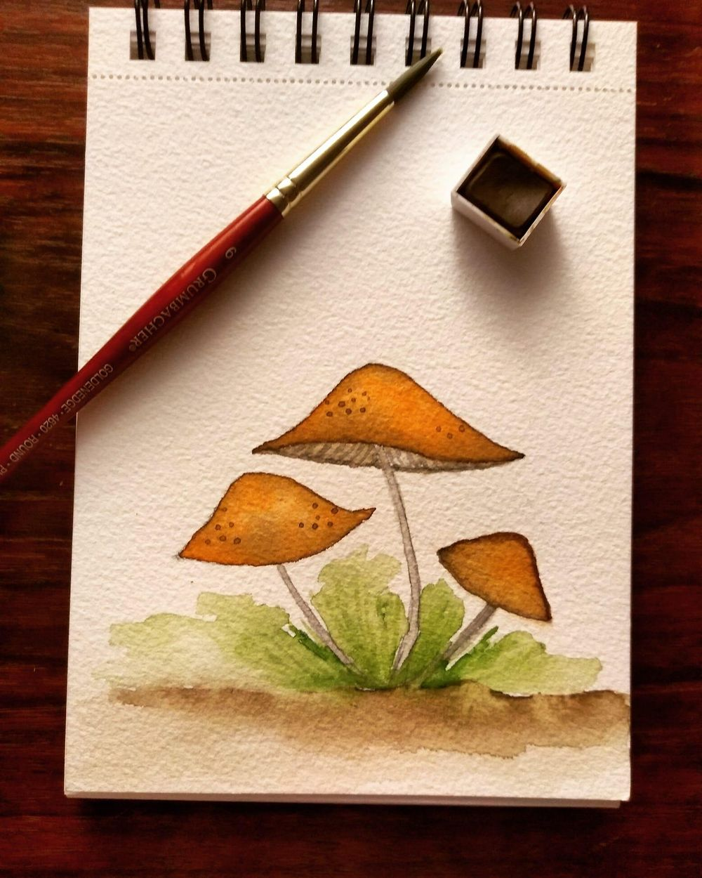 Shrooms - image 1 - student project
