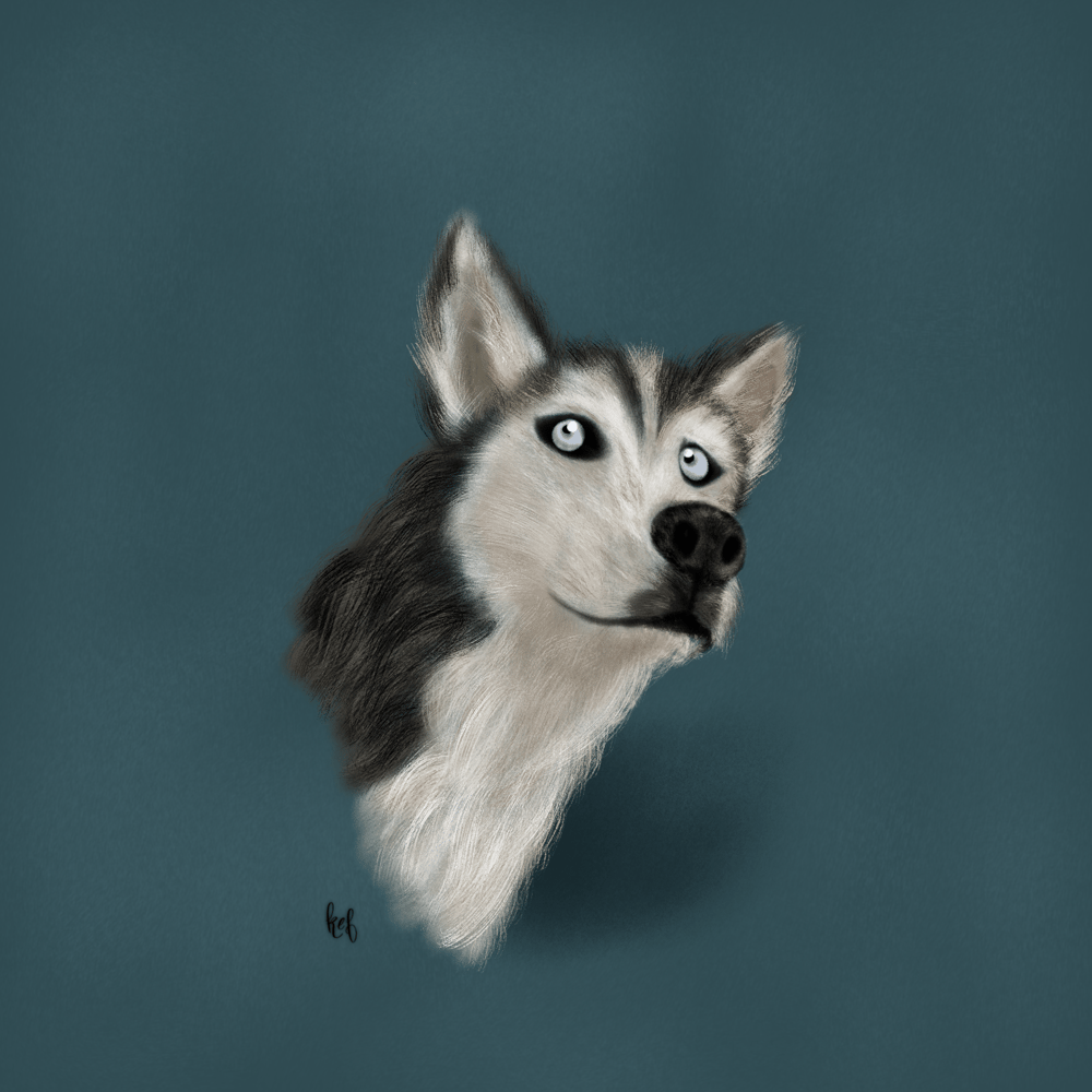 My puppy, Wren! - image 1 - student project